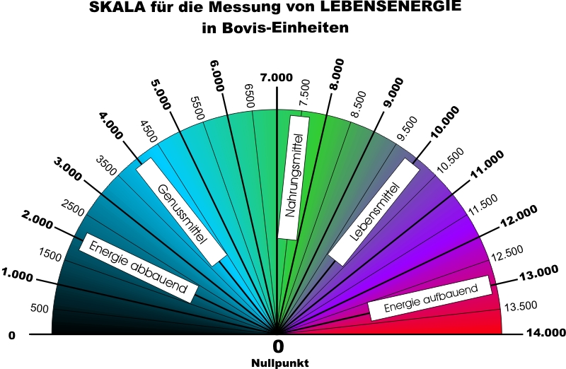 bovis_scala skala bovis