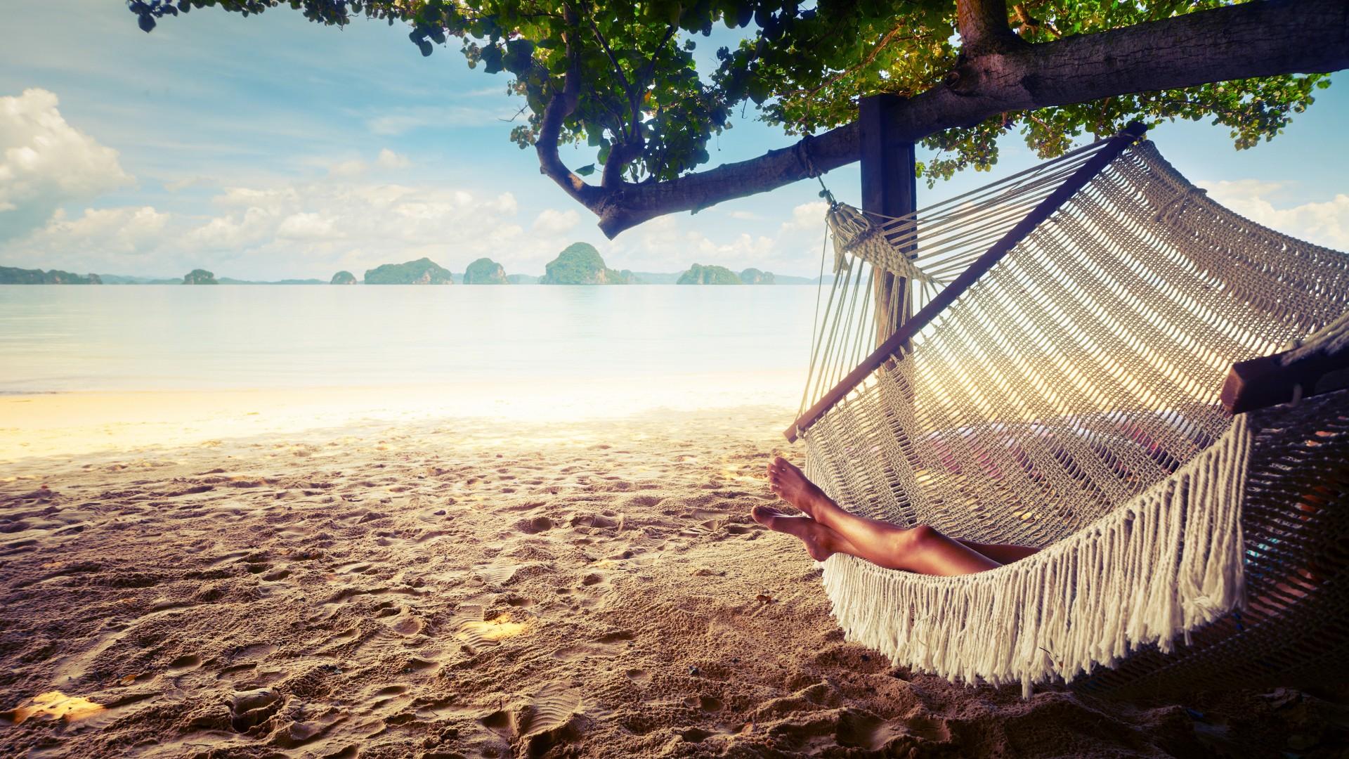 palmen strand erholung urlaub